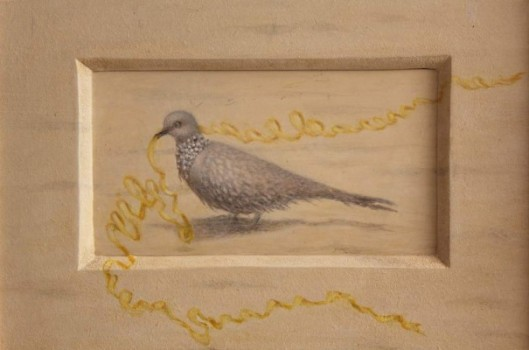 balinese bird 2